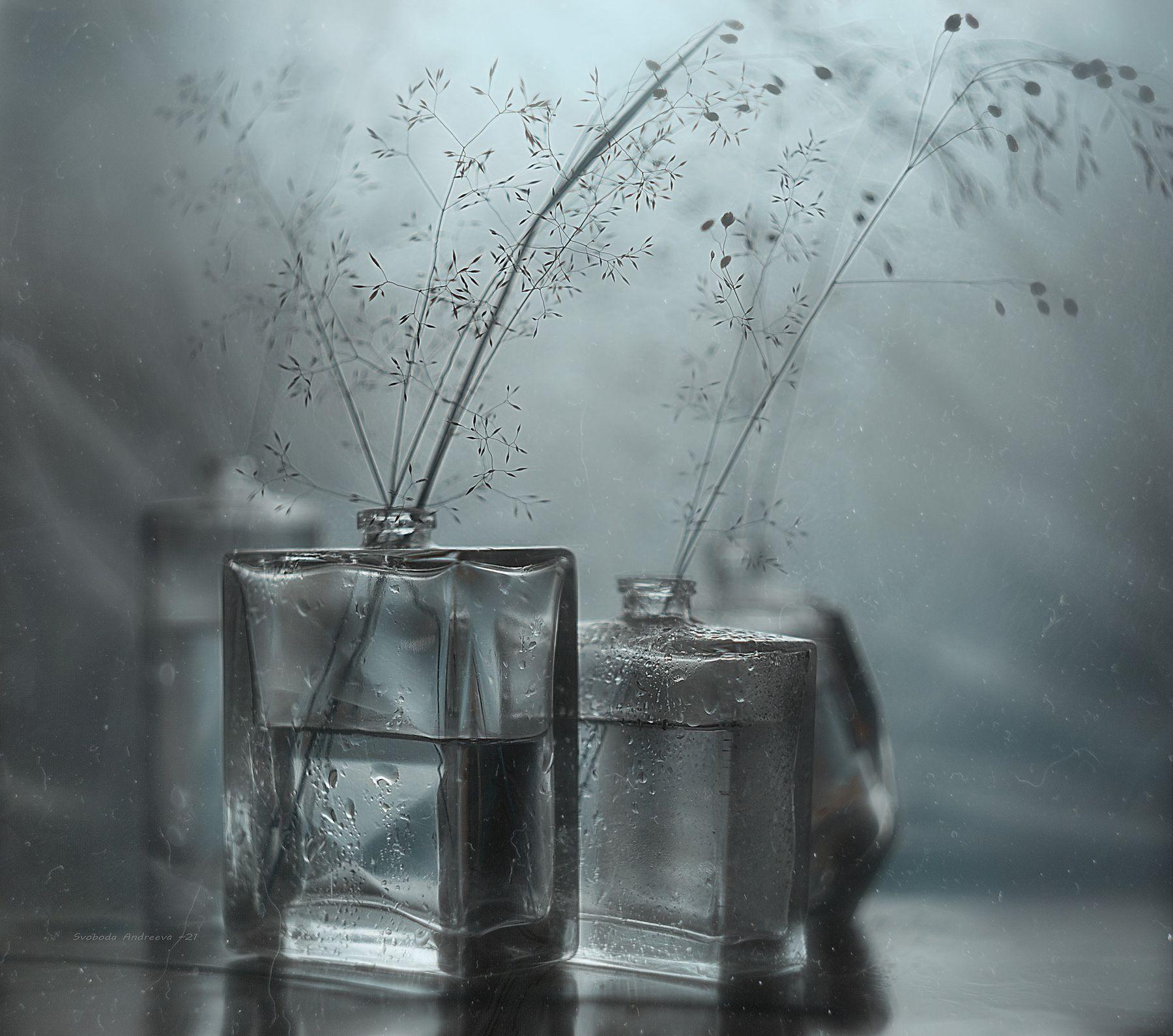 утро дождя*