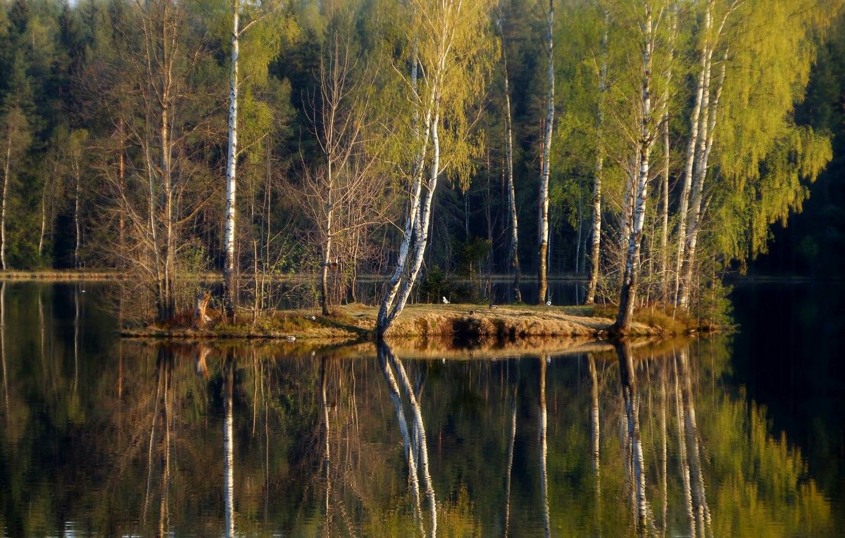 Весенний остров.........