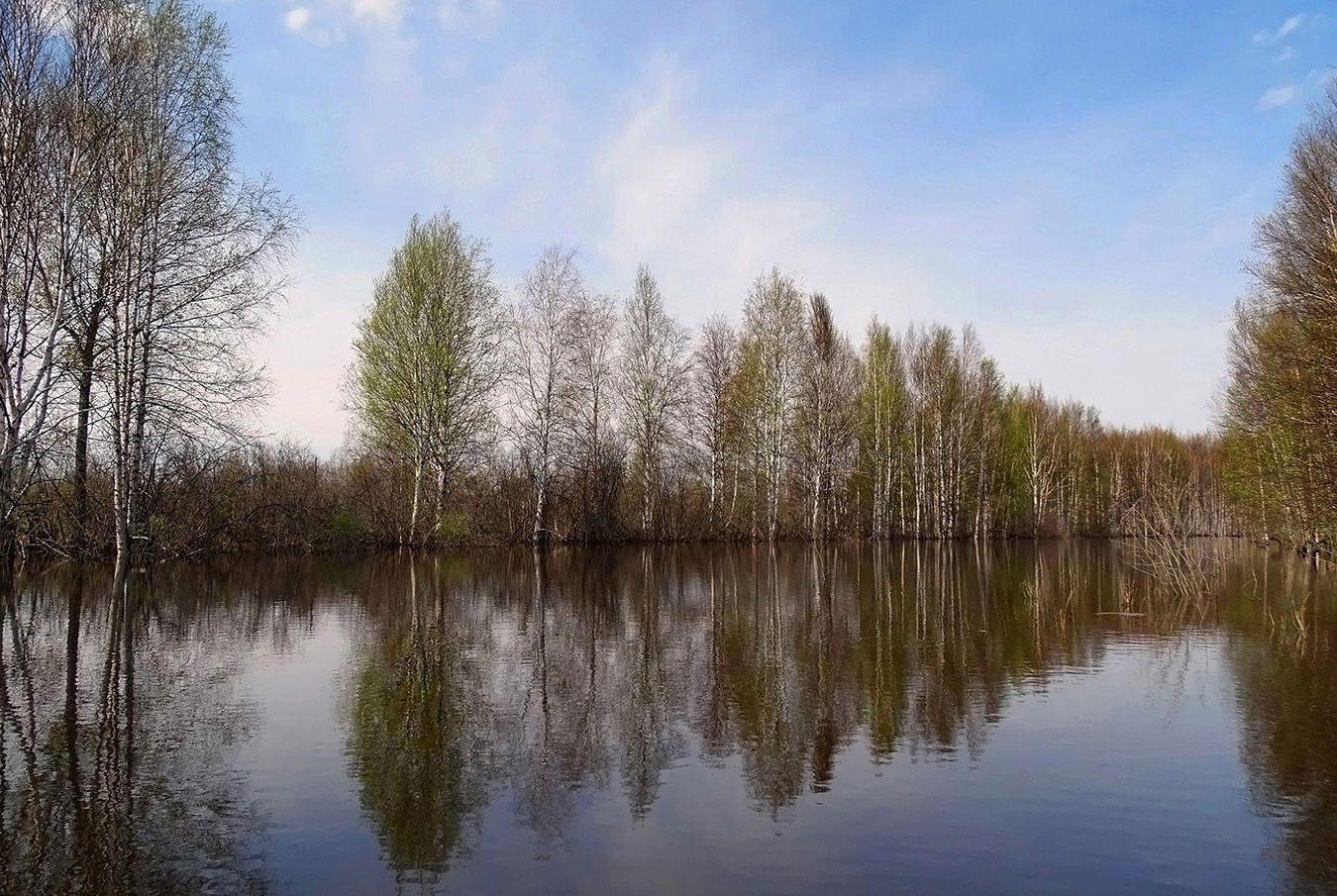 Весеннее озеро Сибирь весна природа пейзаж