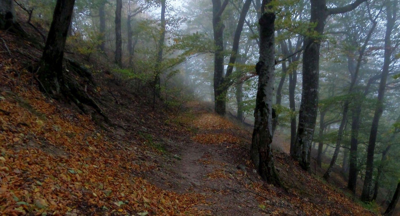 Осенний серпантин...........
