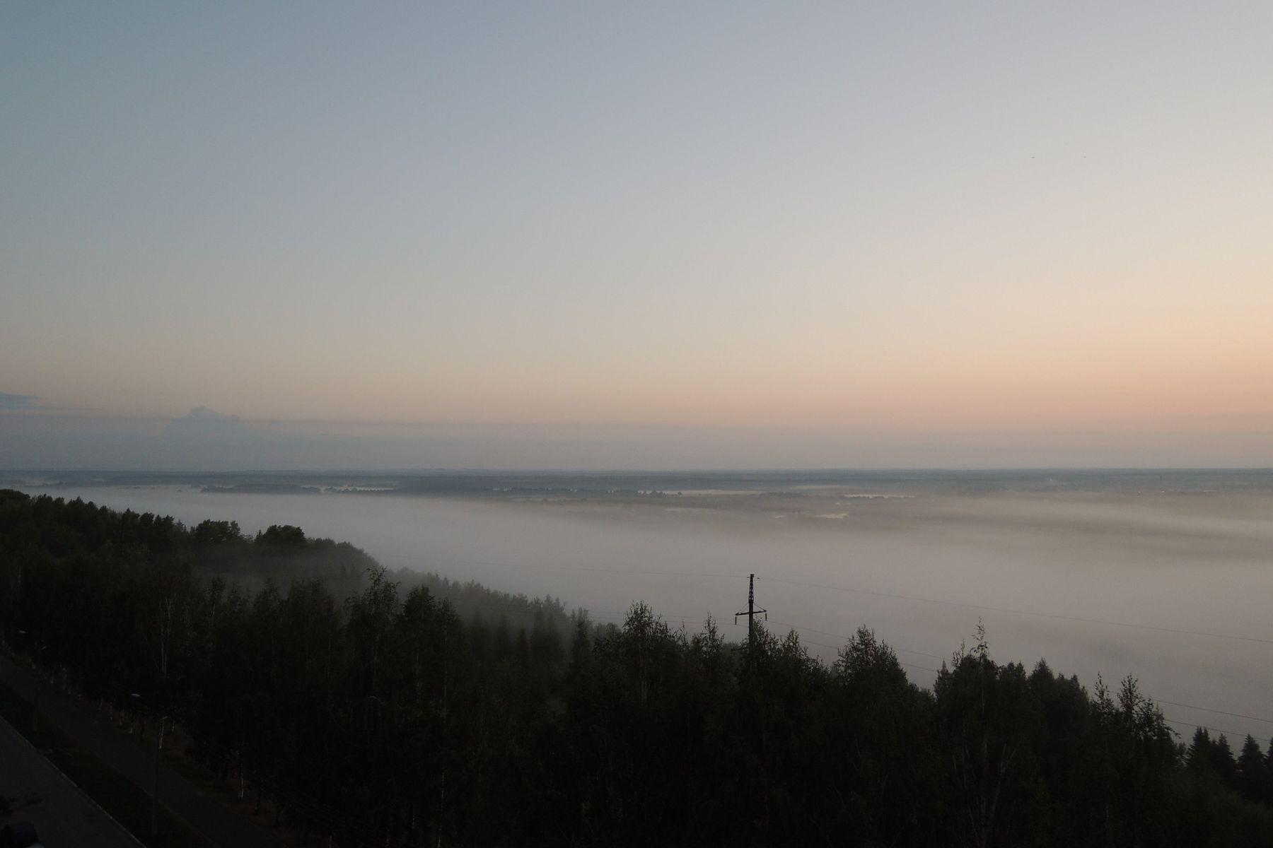 Шелест безмолвия Туман природа