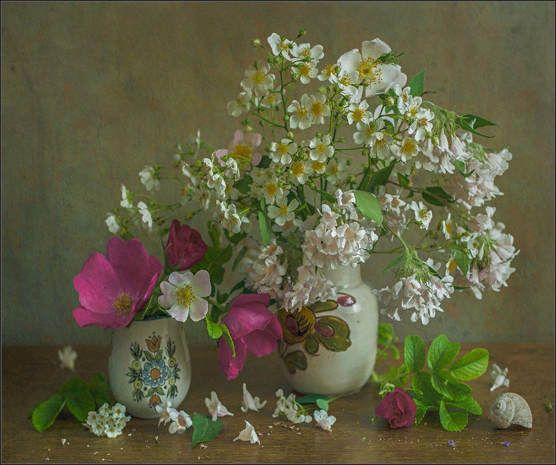 Натюрморт с придорожными цветами