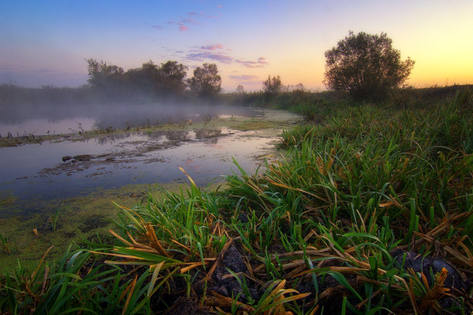 Рассвет на реке пейзаж природа туман река волчья