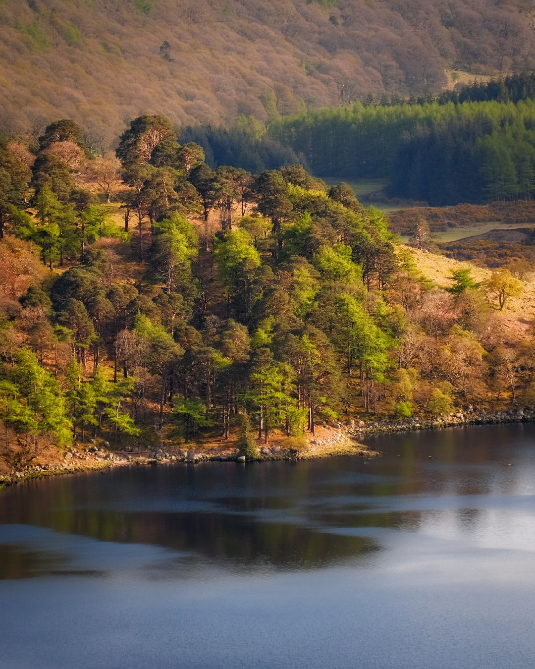 ...пёстрые берега... ireland wicklow tay guiness lake luggala nature outdoors landscape from above slopes hills mountains trees pine scenic scenery picturesque awe wonderful europe reflection variegated light soft tones tints