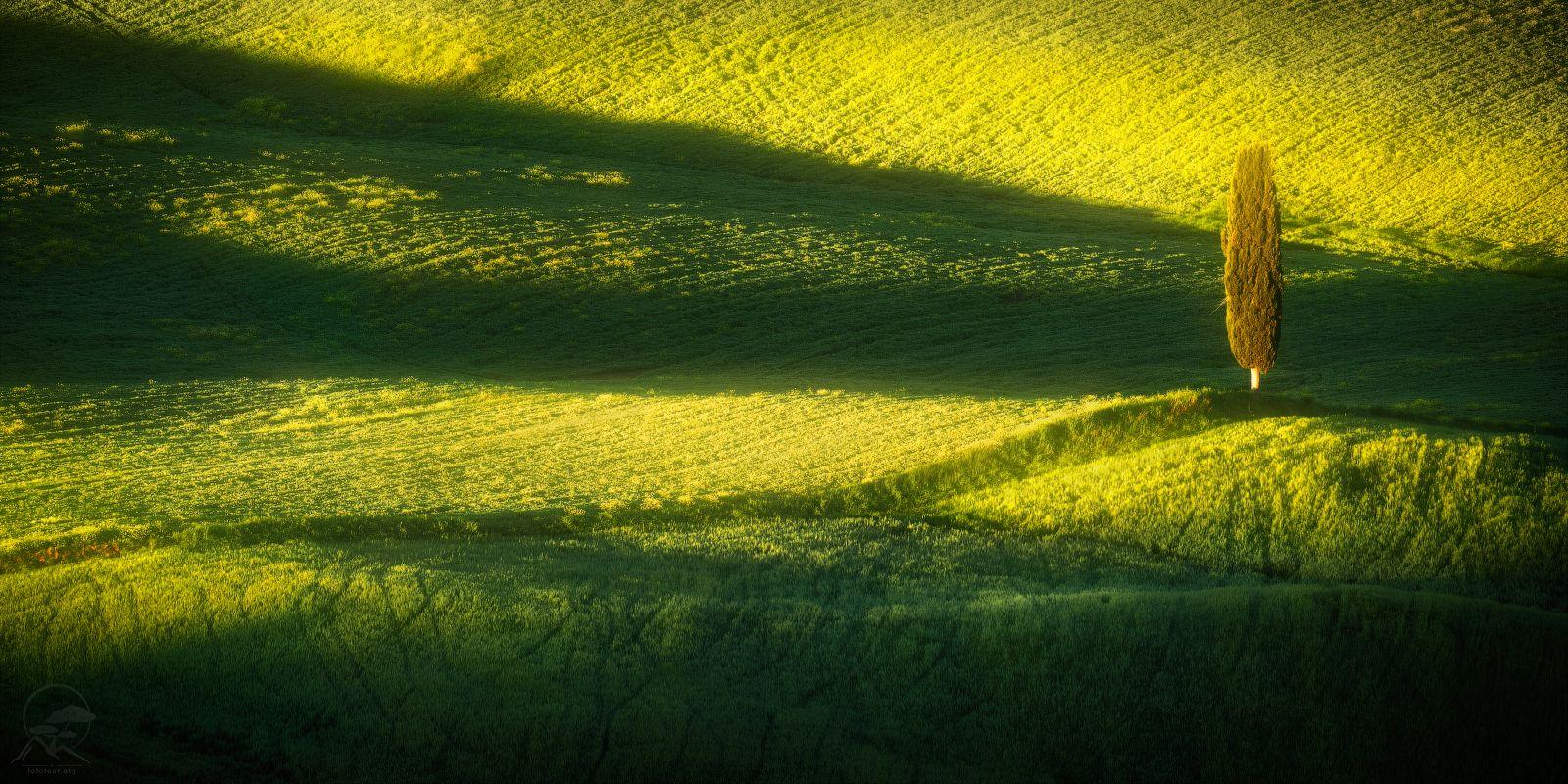 Из солнечной Тосканы привет пейзаж италия тоскана кипарис холмы весна
