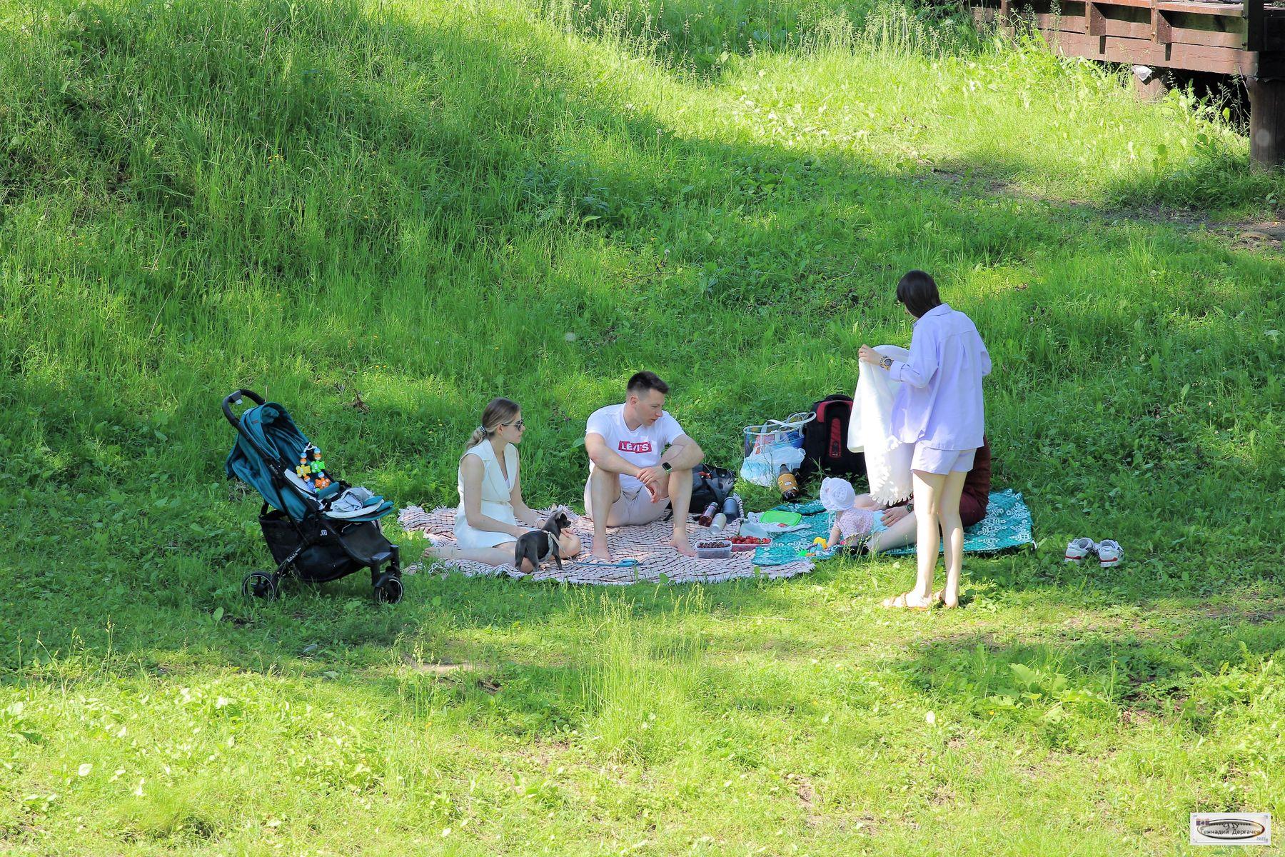 Пикник по-семейному пикник семья июнь