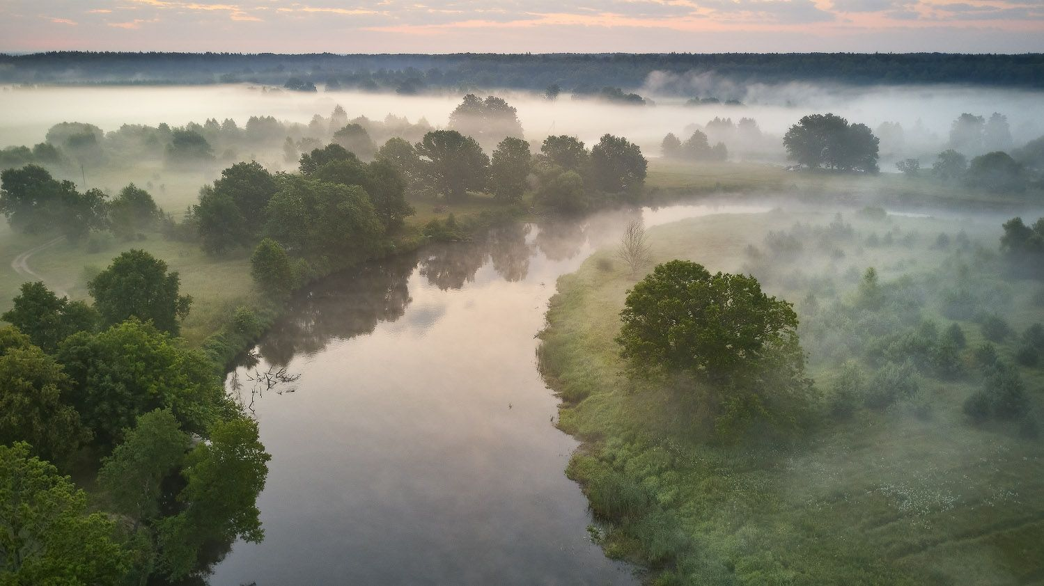 Занималось утро над летней дубравой Беларусь Дубрава Июль Лето Луга Рассвет Река Свислочь Туман Утро
