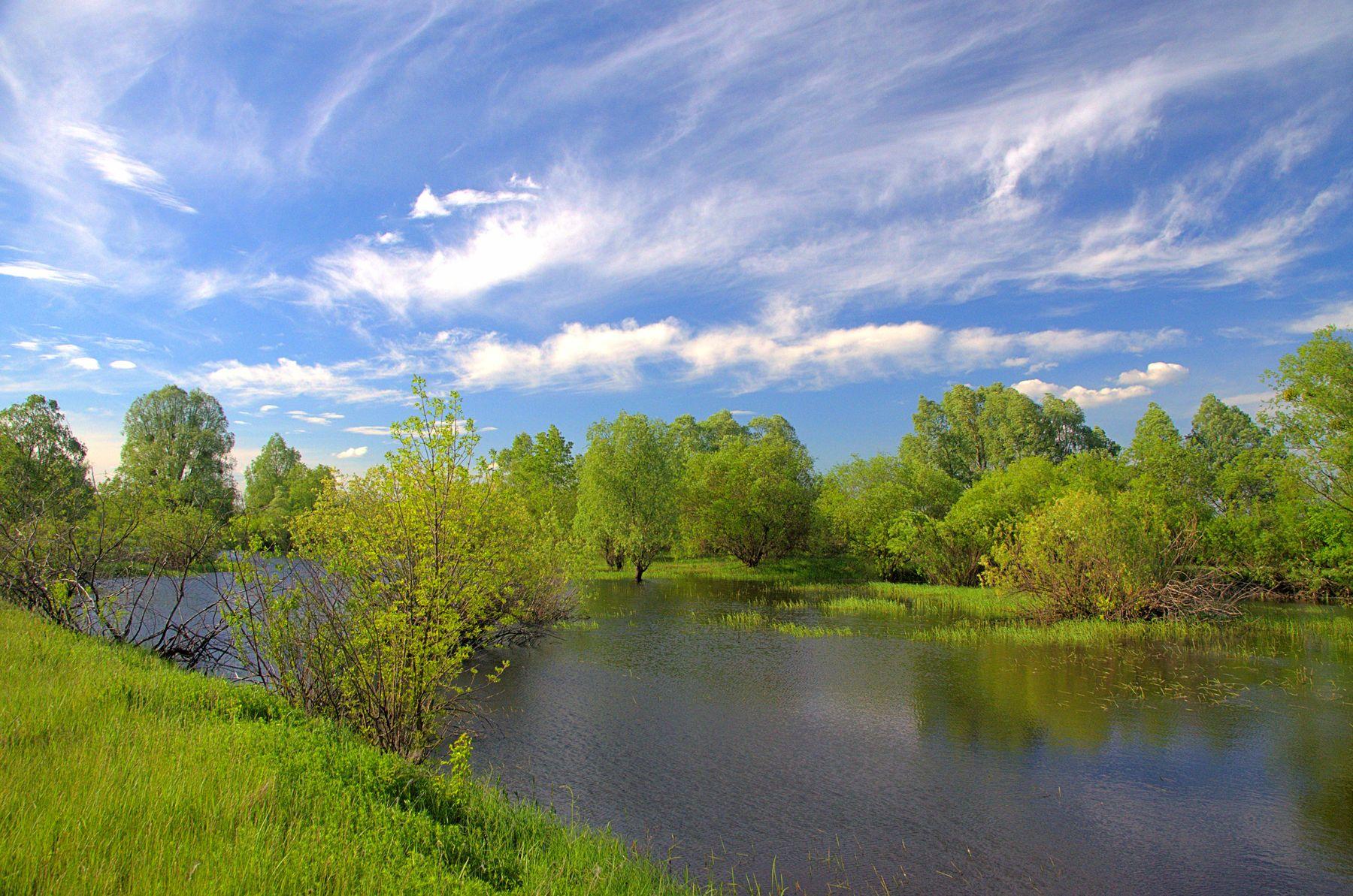 *** весна река озеро деревья облака HDR вода
