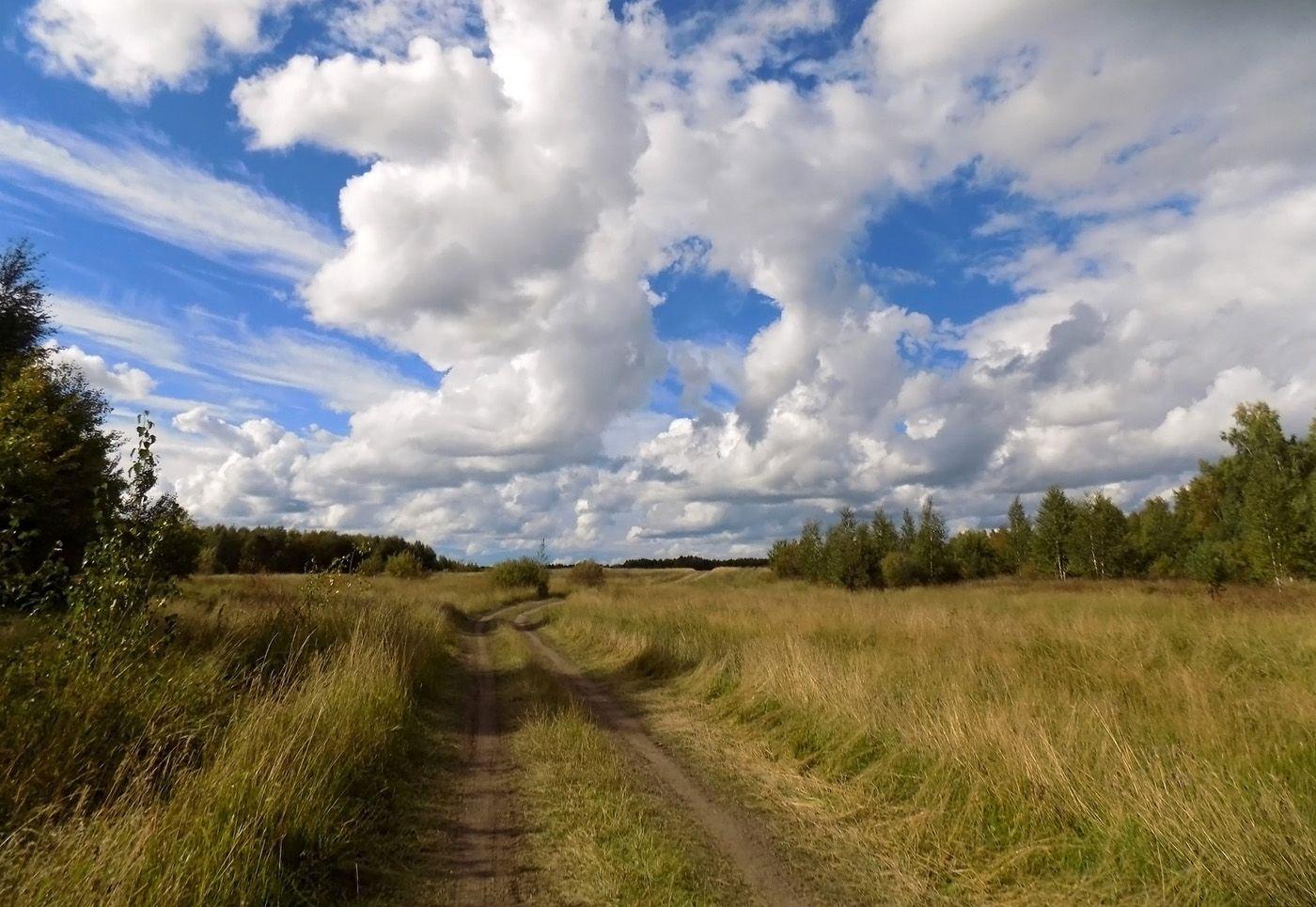Дорога в небеса... Сибирь лето пейзаж