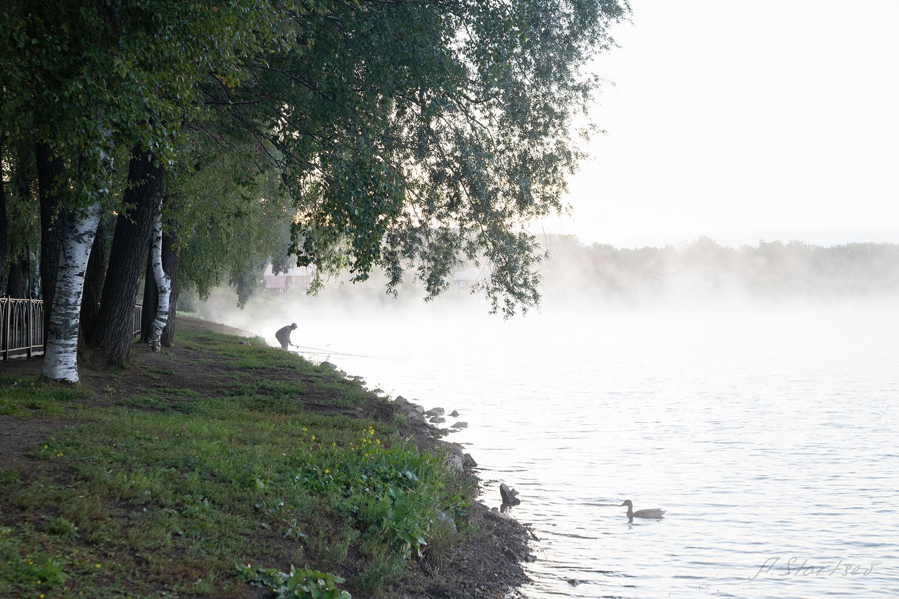 Туманное утро утро рассвет пруд озеро вода небо лето пейзаж природа Пермский_край Лысьва туман