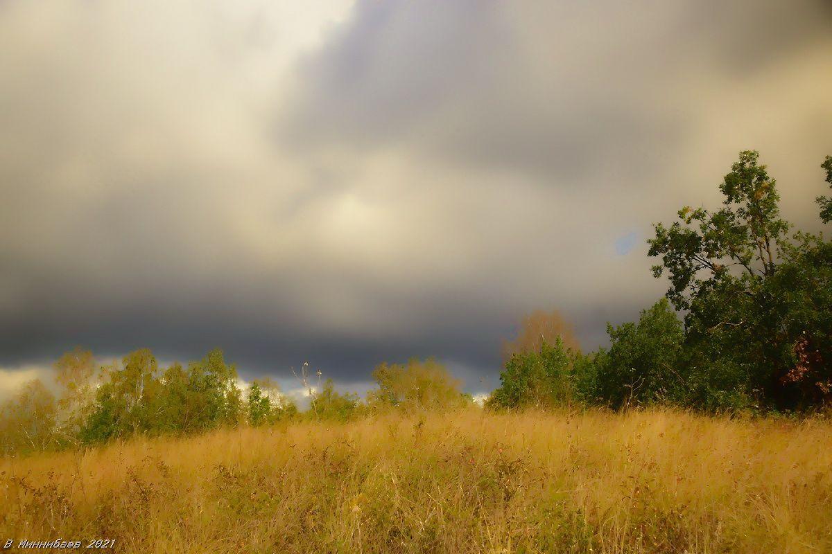 Осеннее небо пейзаж осень.лес небо