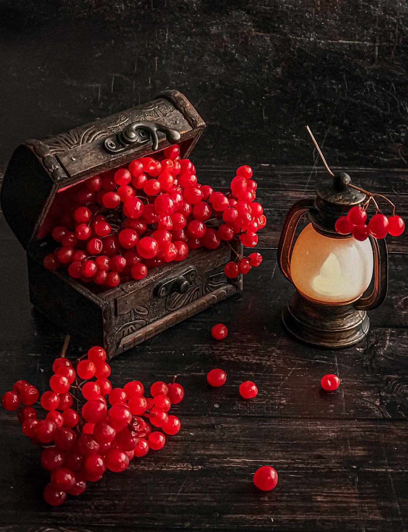 Калина красная Ягоды калина натюрморт
