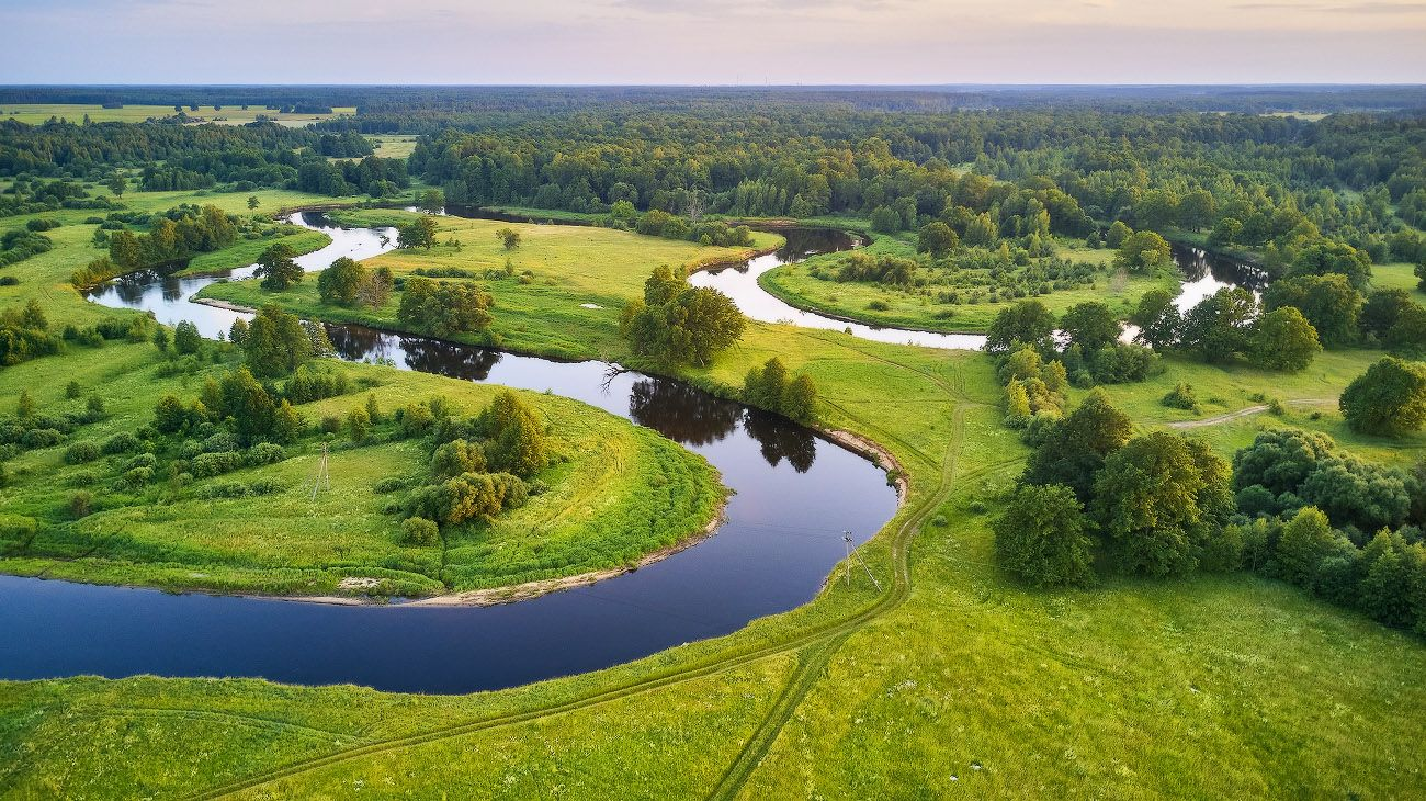 Лето летнее Беларусь Вечер Дубрава Июнь Лето Луга Поля Свислочь