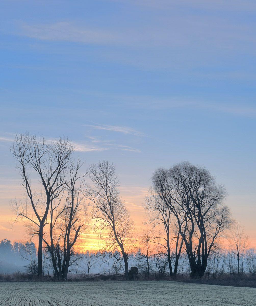 ЪЪ утро солнце легкий туман