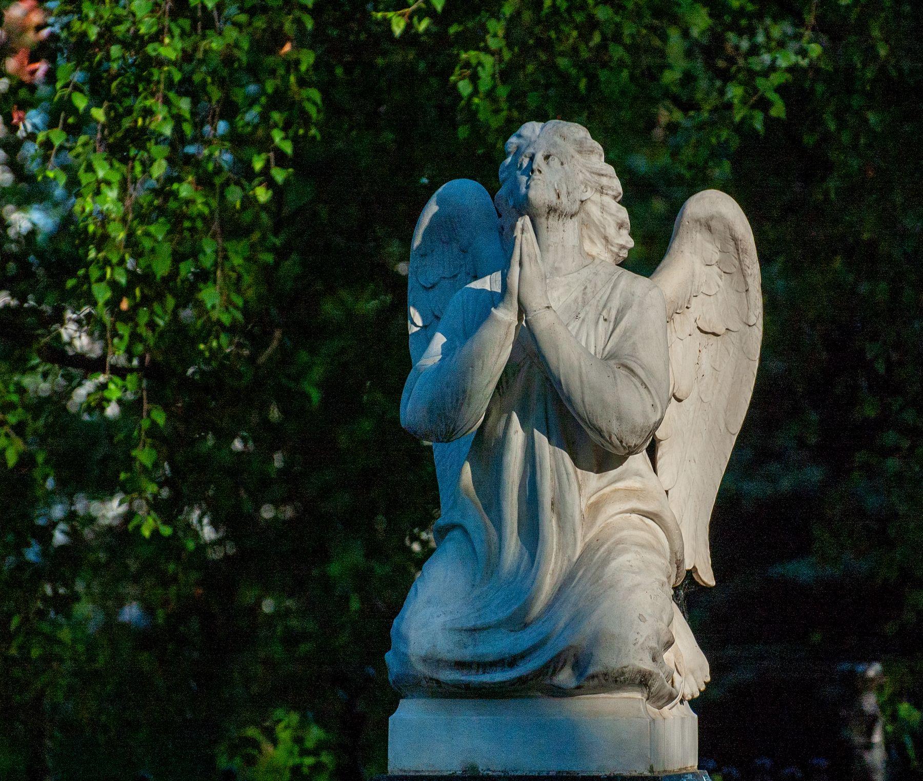 *** ангел вечность погост