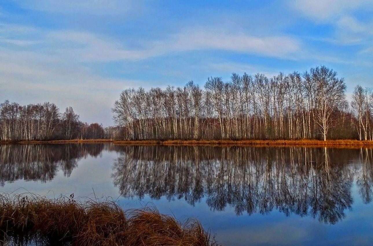 Глубокая осень. Озеро. Природа осень озеро пейзаж