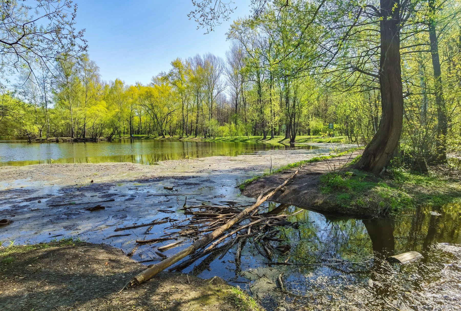 *** парк пруды весна май вода