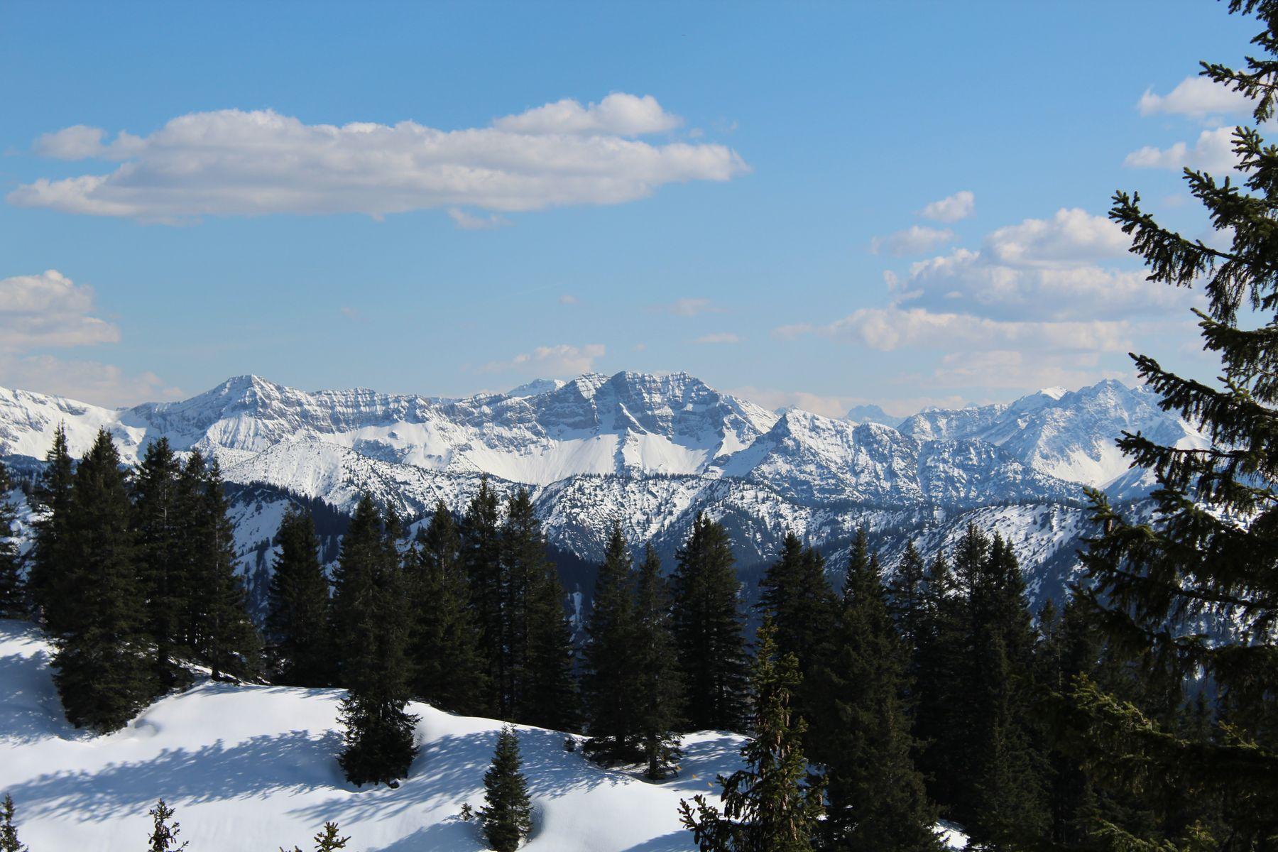 Горы, снег и лес