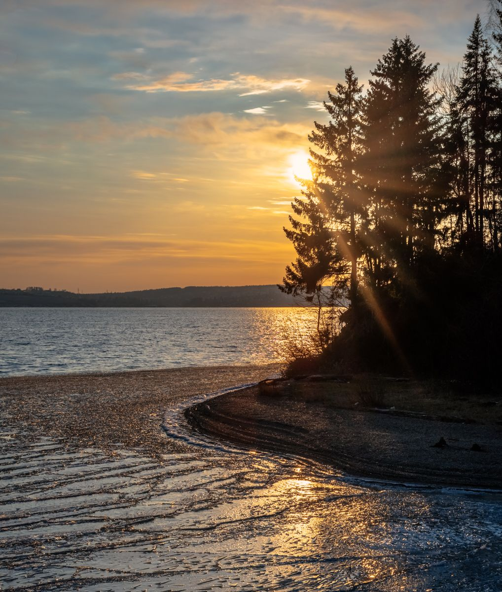Прибрежная полоса Пейзаж Пермский край Пермь Урал лес солнце контраст зима лед