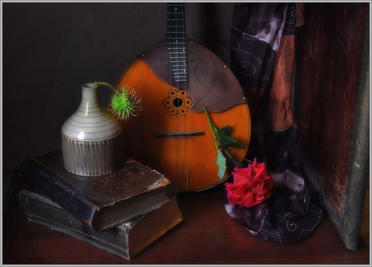 ...... Каштан и роза ..... предметы свет идея гармония композиция