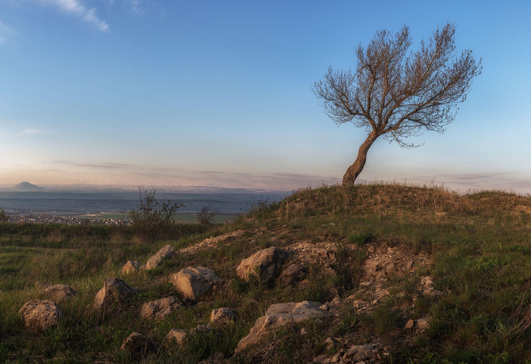 Утренние зарисовки Природа пейзаж горы облака небо рассвет утро дерево Кавказ кмв Россия Алтушкин