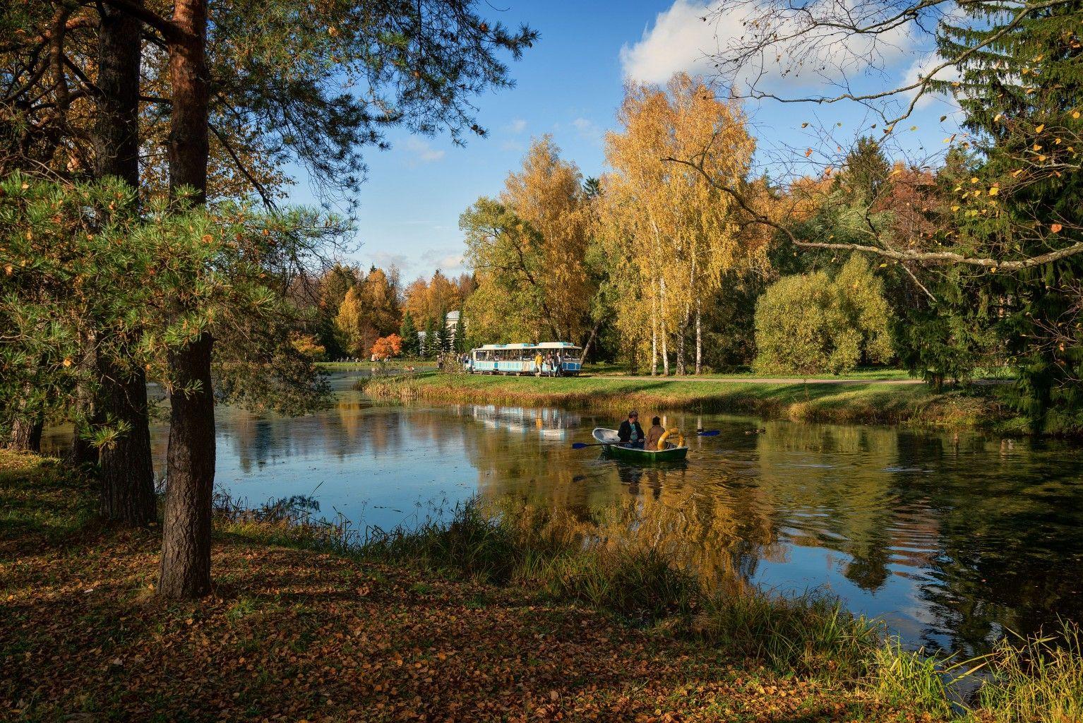 В павловском парке петербург осень павловск пруд лодка