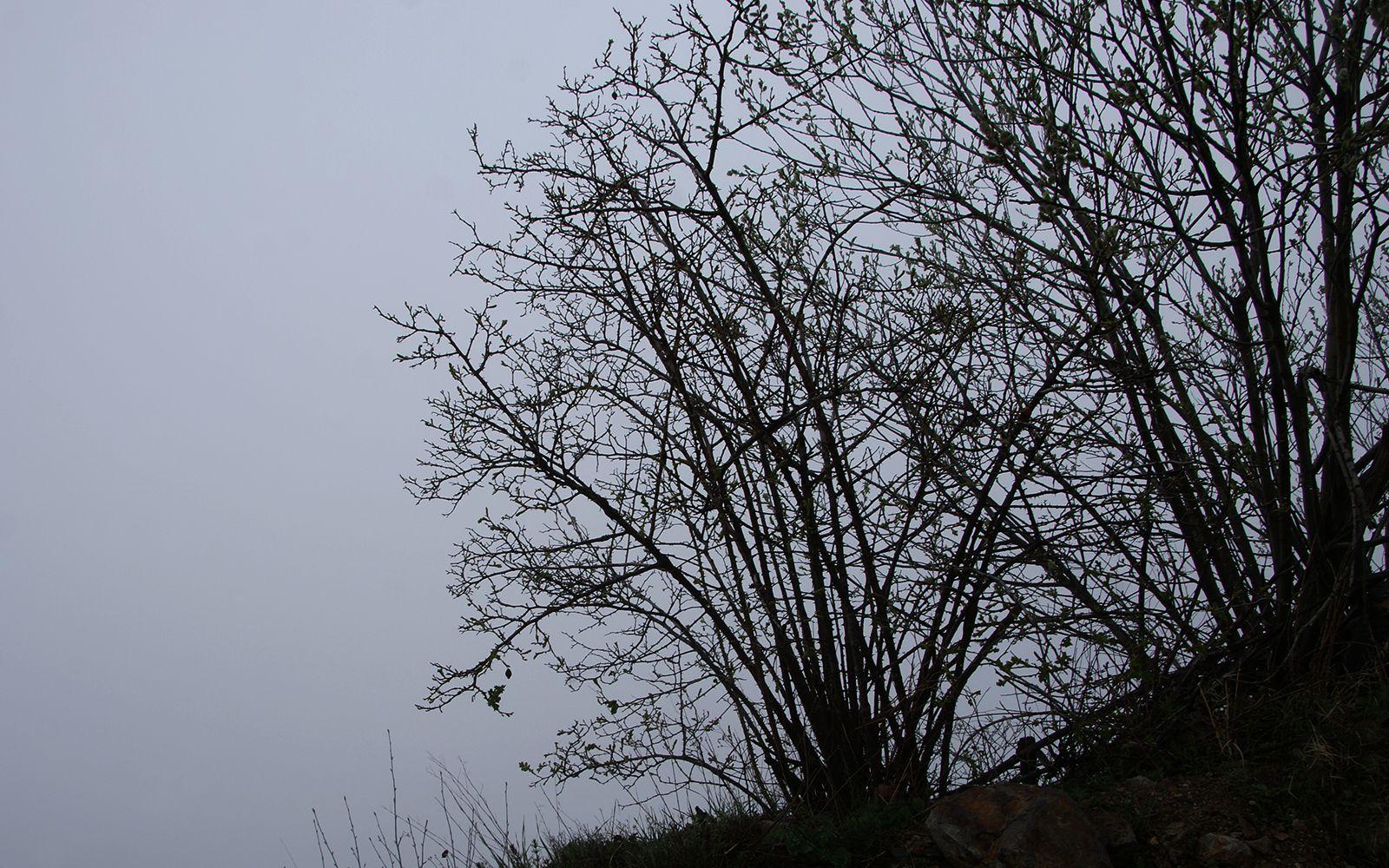 в ине ян Архонский перевал инь ян облако