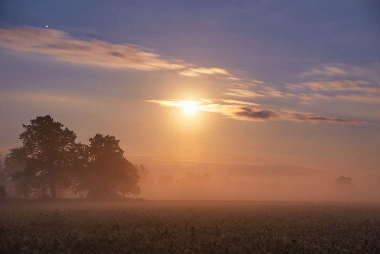 Ночь в Июле Беларусь Июль Лето Луна Ночь Туман Уса