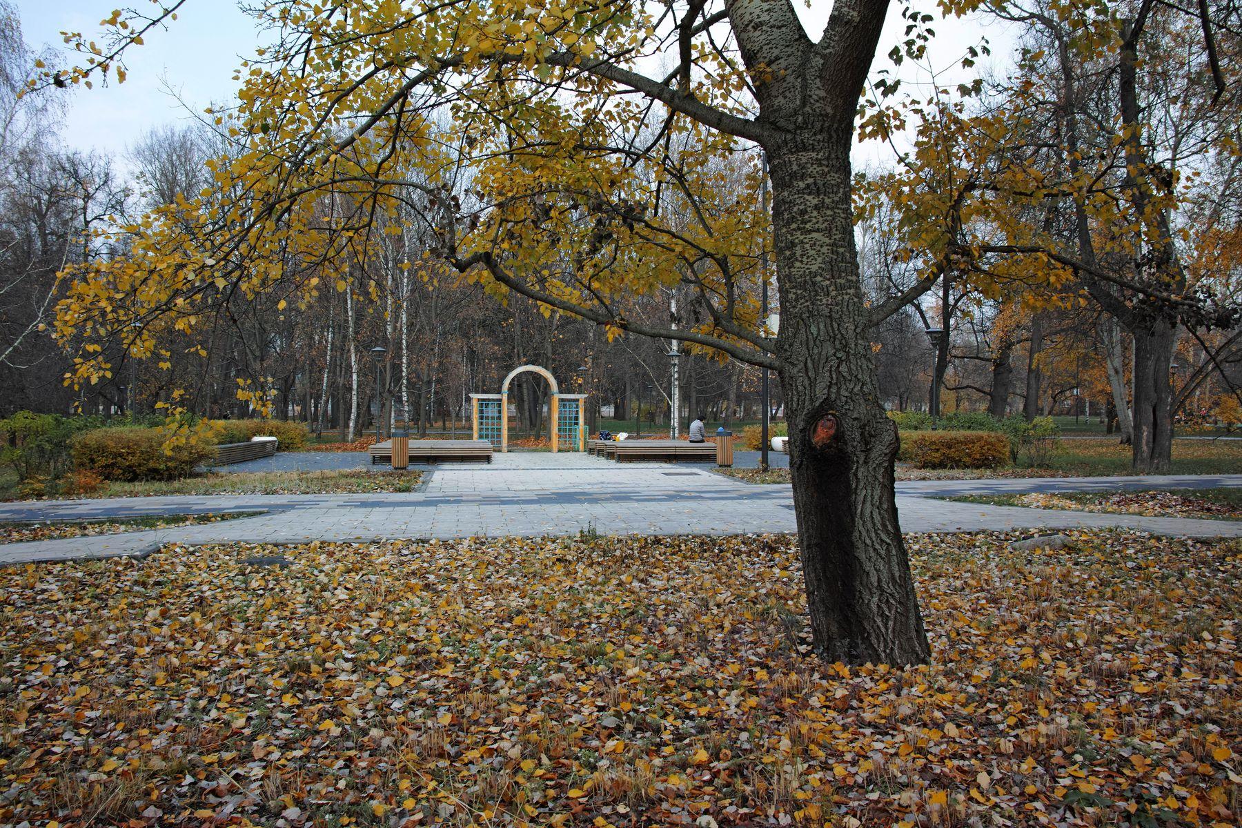 Сад будущего город Москва парк Сад будущего