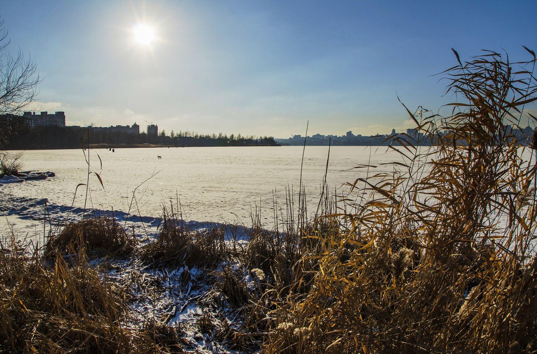 Мороз без снега мороз Воронеж водохранилище лед солнце зима