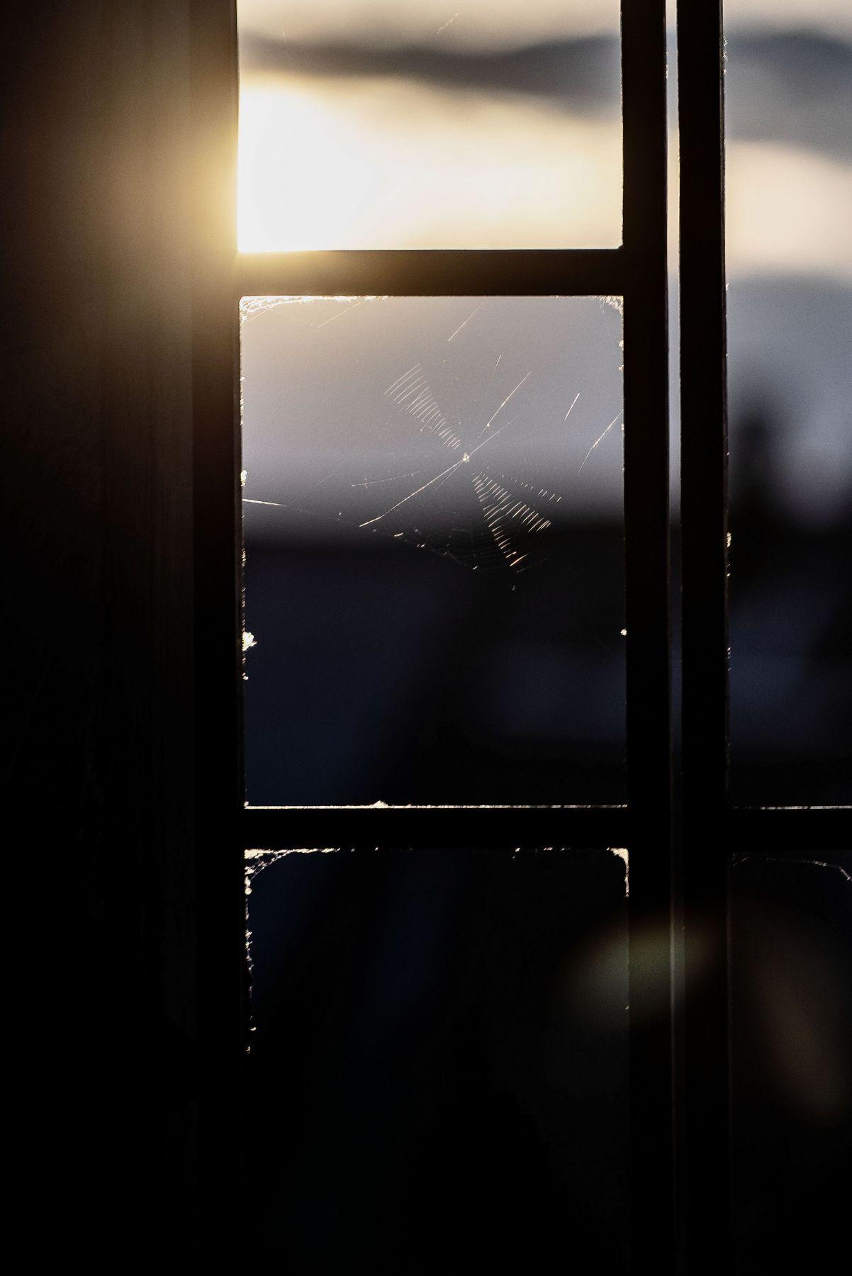 Окно на закате