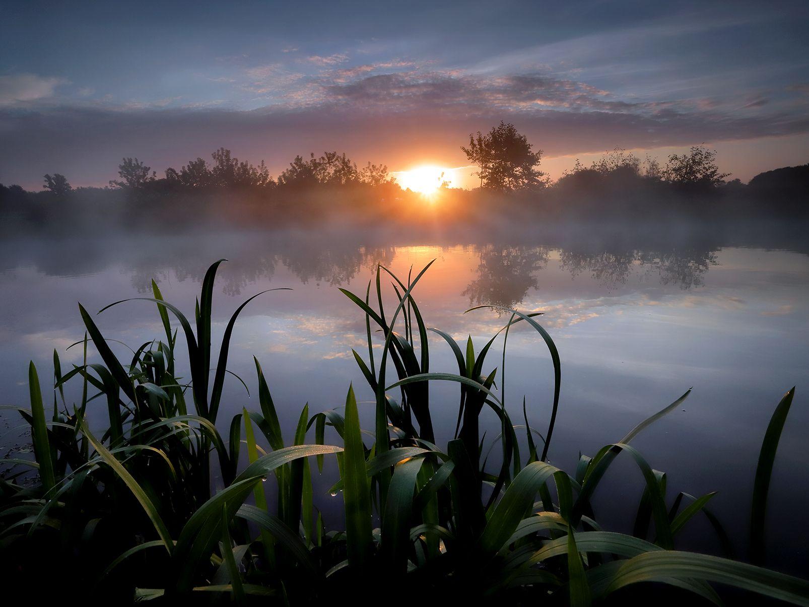Берег рассвета... туман солнце рассвет свет река
