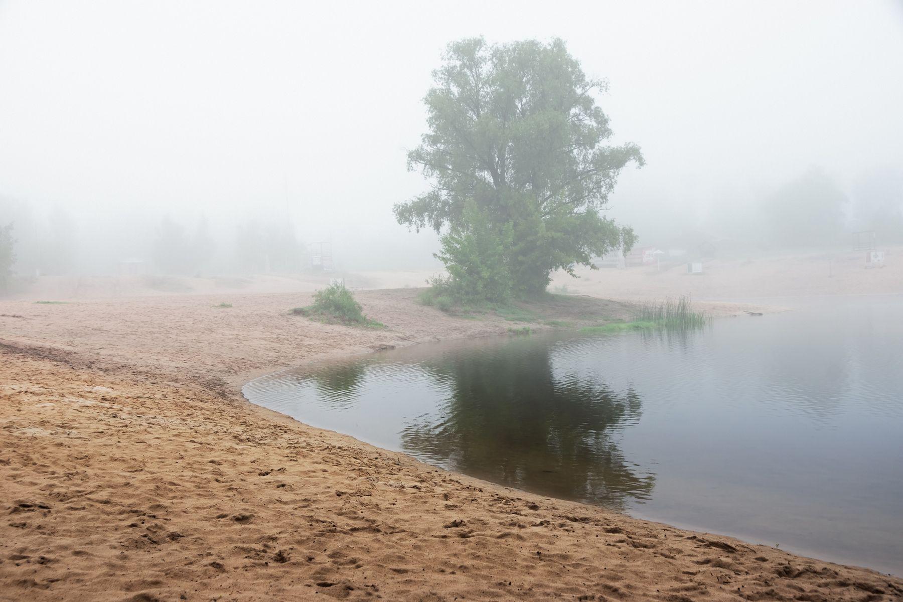 Утренняя тишина пейзаж природа утро туман пляж река Усманка тишина дерево Воронеж