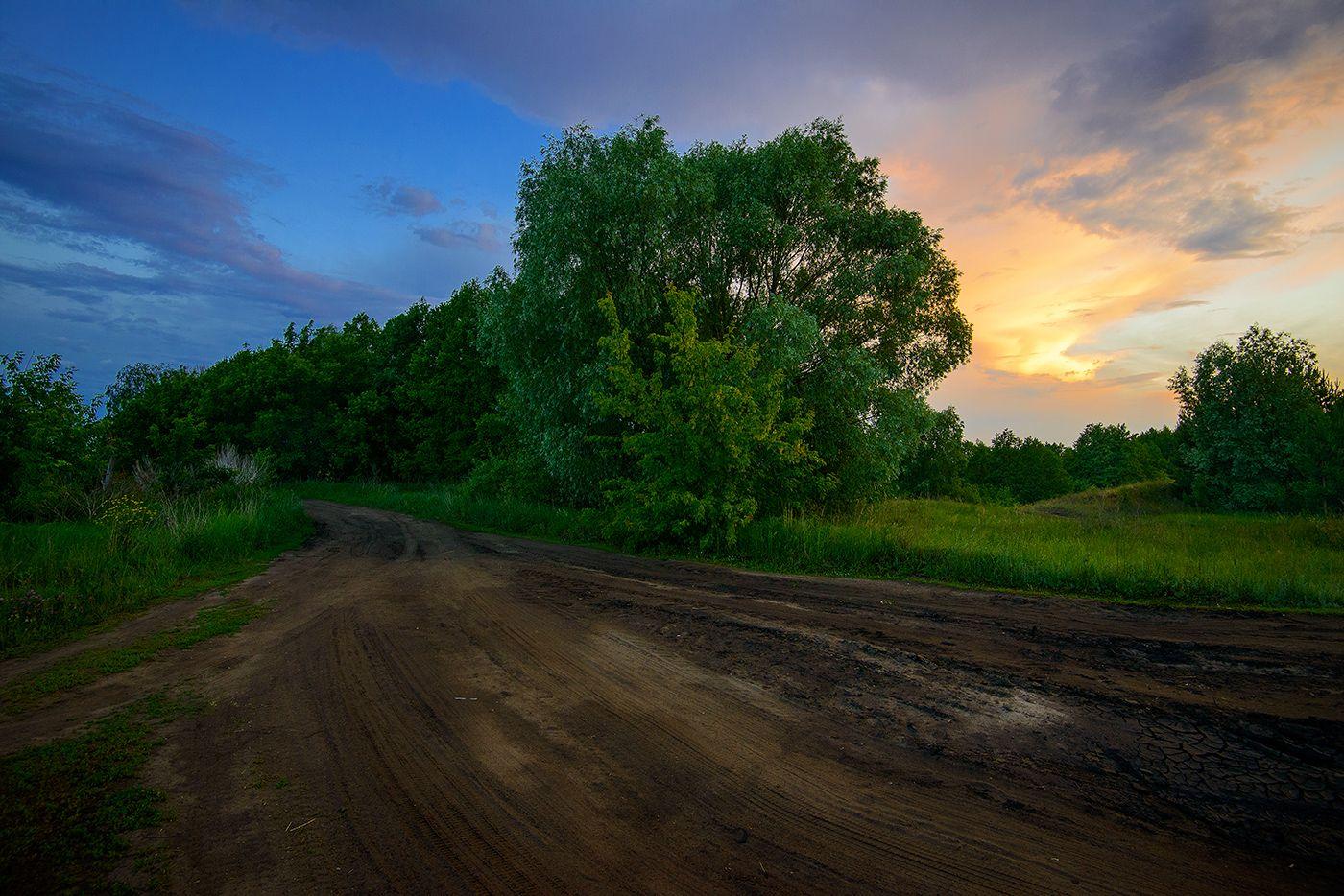 Дорога домой... Лето вечер дорога