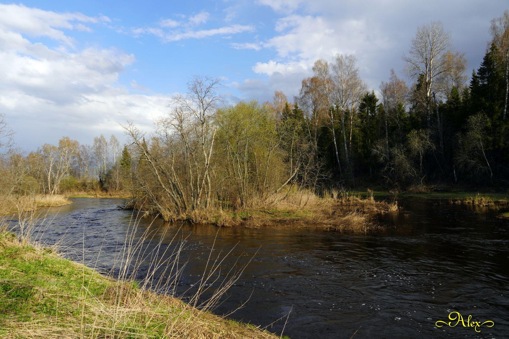 Островок река островок природа пейзаж весна половодье