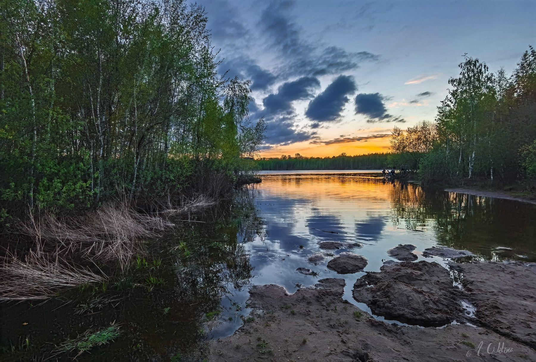 *** озеро вечер закат тучи облака берег трава березы лес