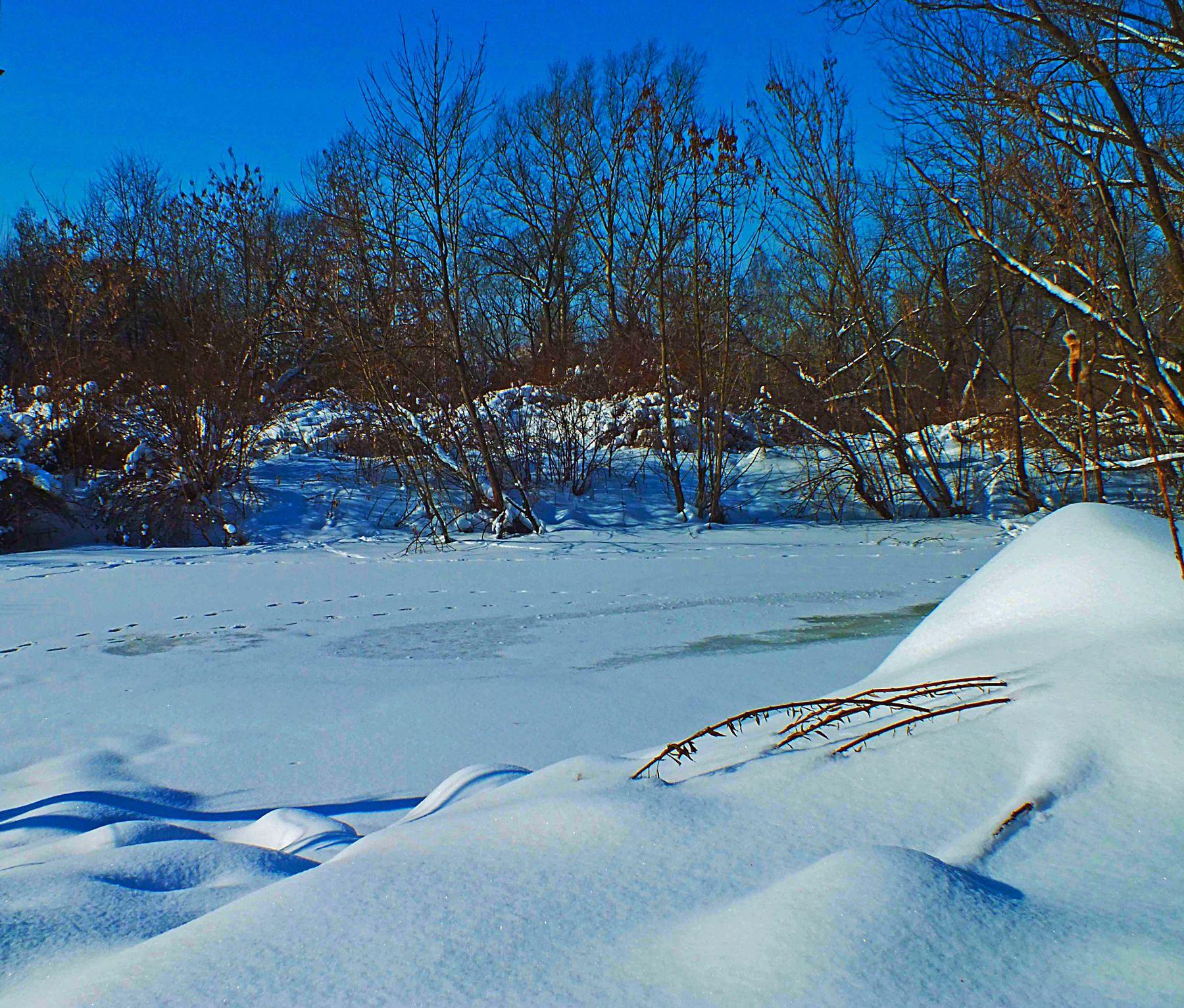 Снежный февраль зима снег мороз