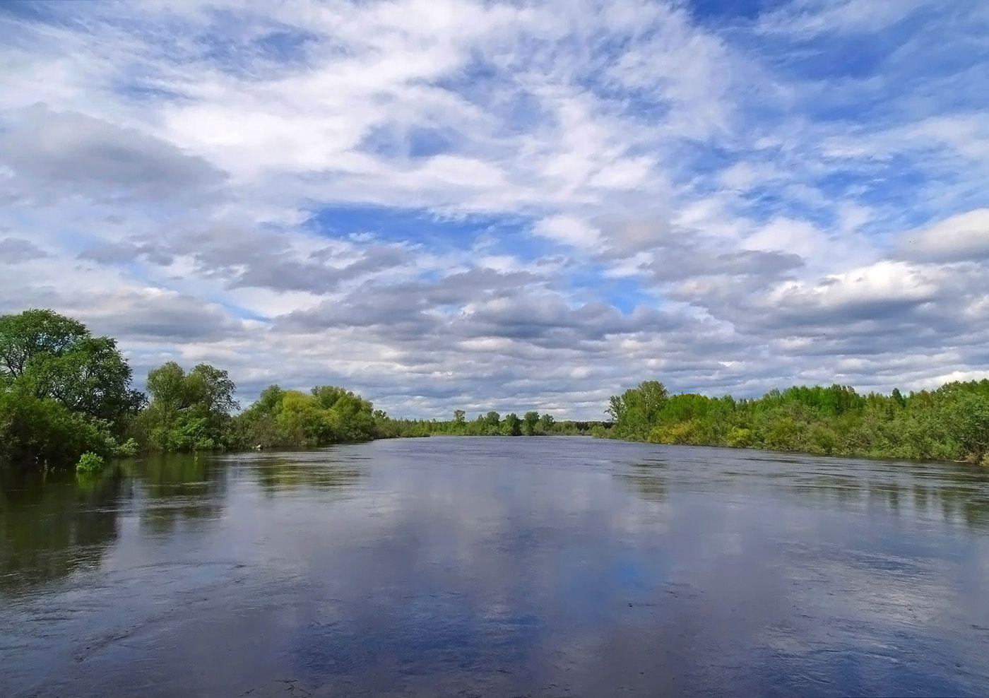 Полноводная река Сибирь лето природа пейзаж река