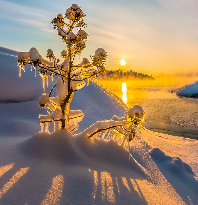 Творчество Ладоги Ладожское озеро Карелия зима снег солнце фототур лёд рассвет туман облака фактура сосна дерево