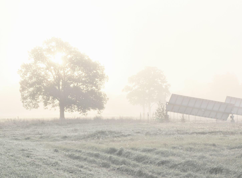 *** туман