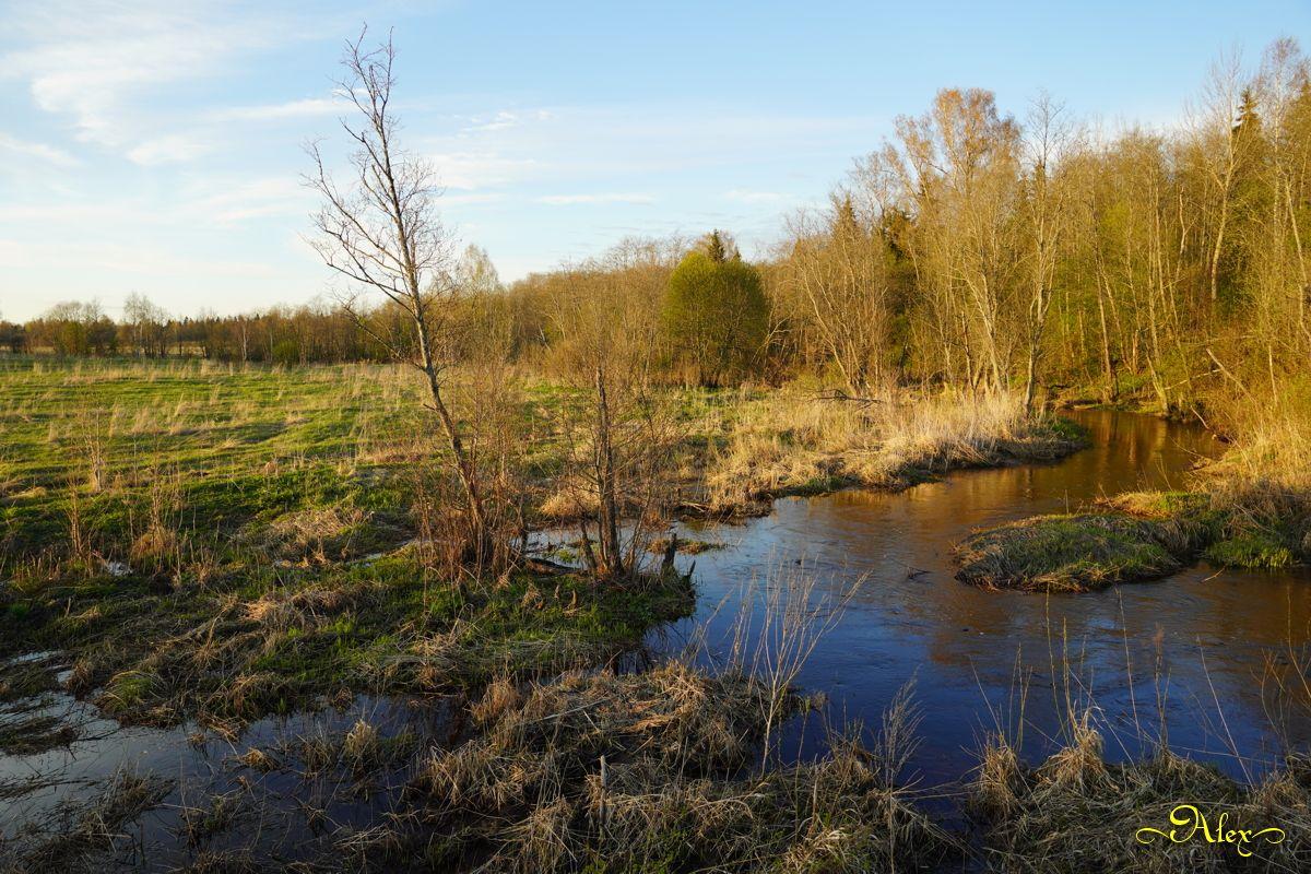 Речка Кершевка речка природа пейзаж весна разлив