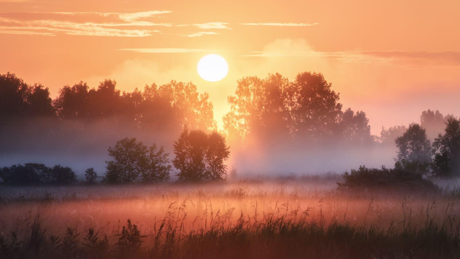 Солнечный этюд рассвет восход солнца туман поле лето новосибирская область