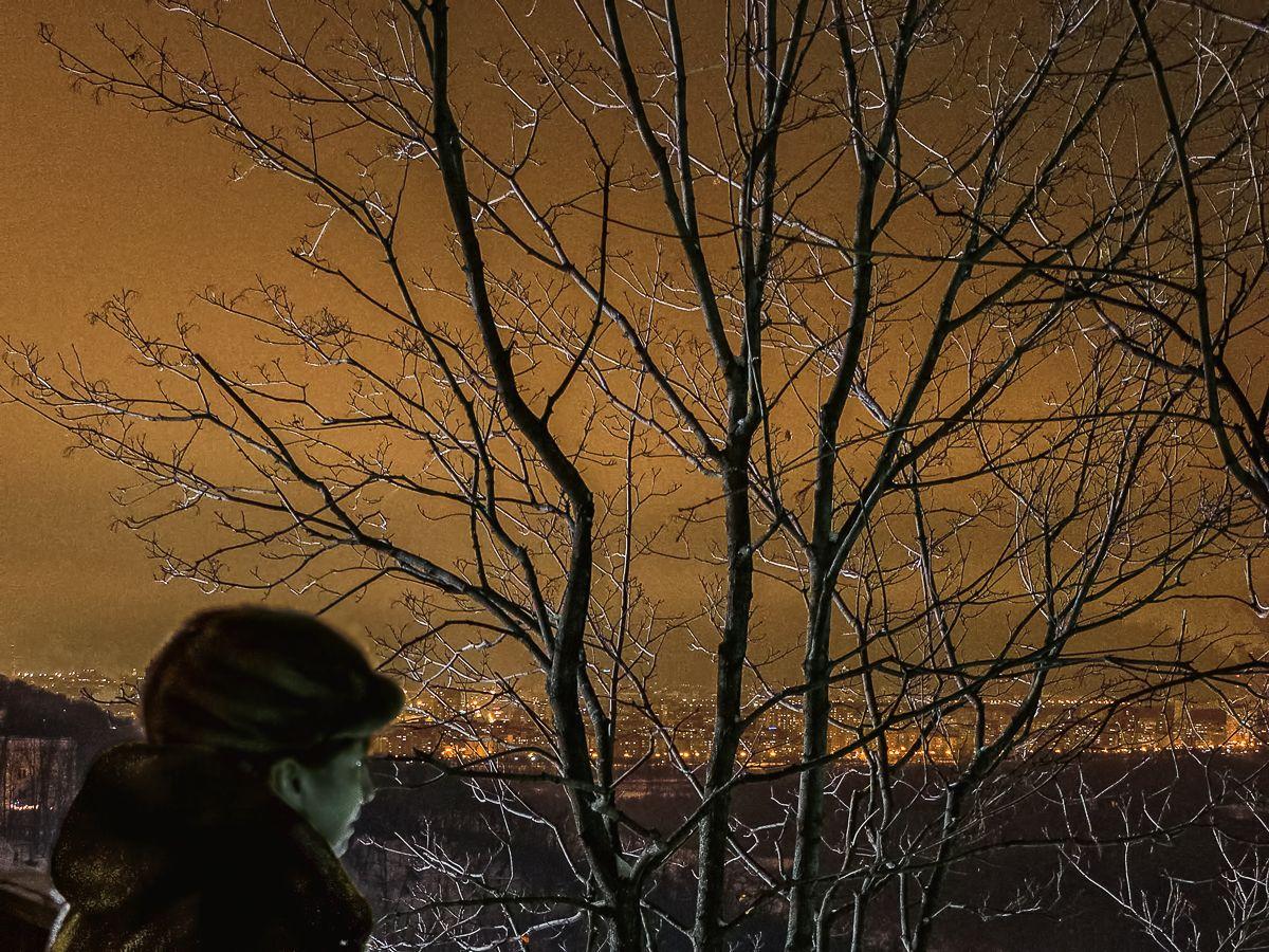 Серебристые блики на небе ночном ночь дерево свет