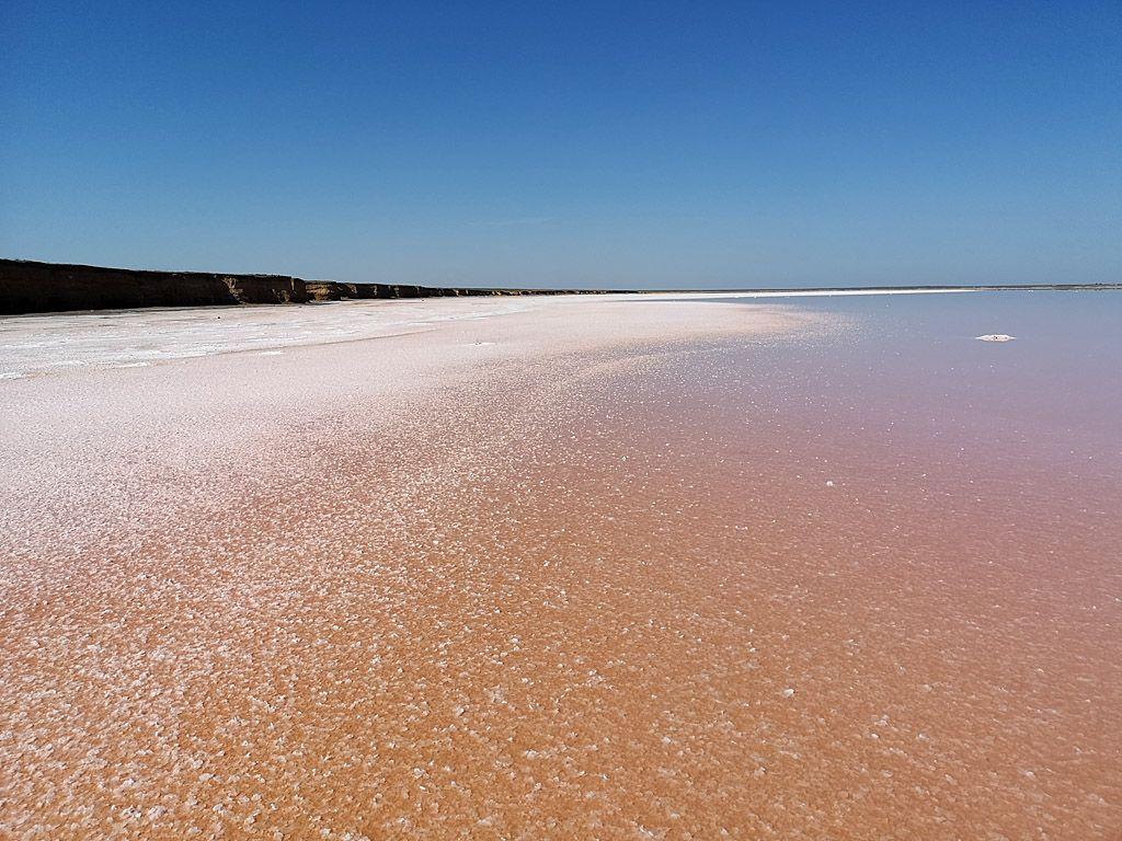 Розовое озеро возле Счастливцево #1