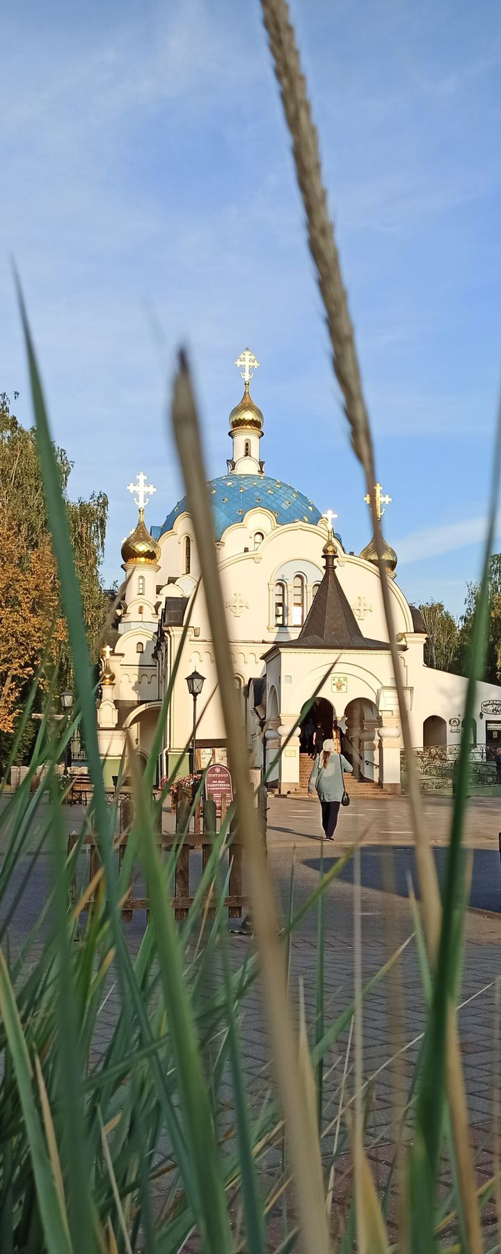 Свято-Елисаветинский монастырь.Минск. Храм монастырь Минск