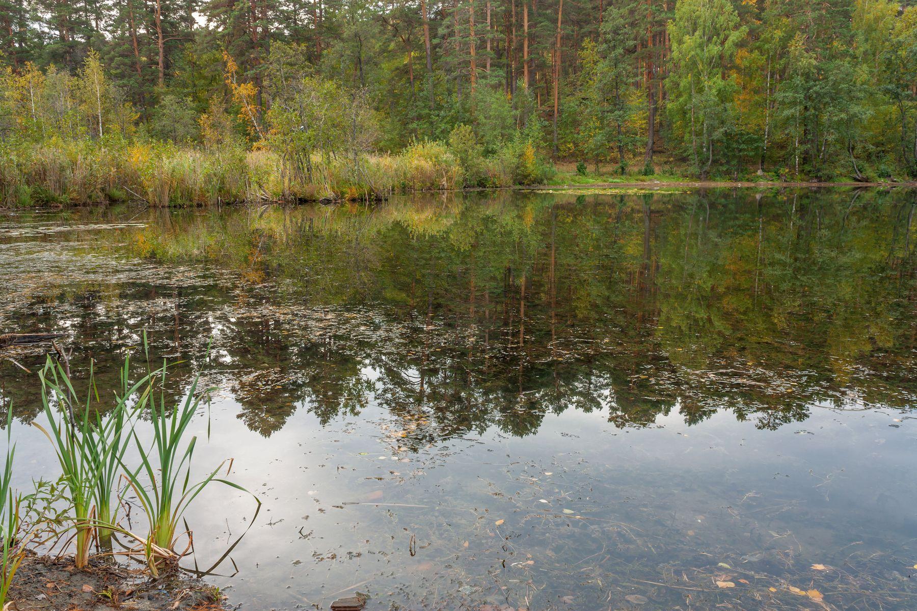 Начало осени. Озеро Инышко. Южный Урал Миасс Инышко природа озеро осень