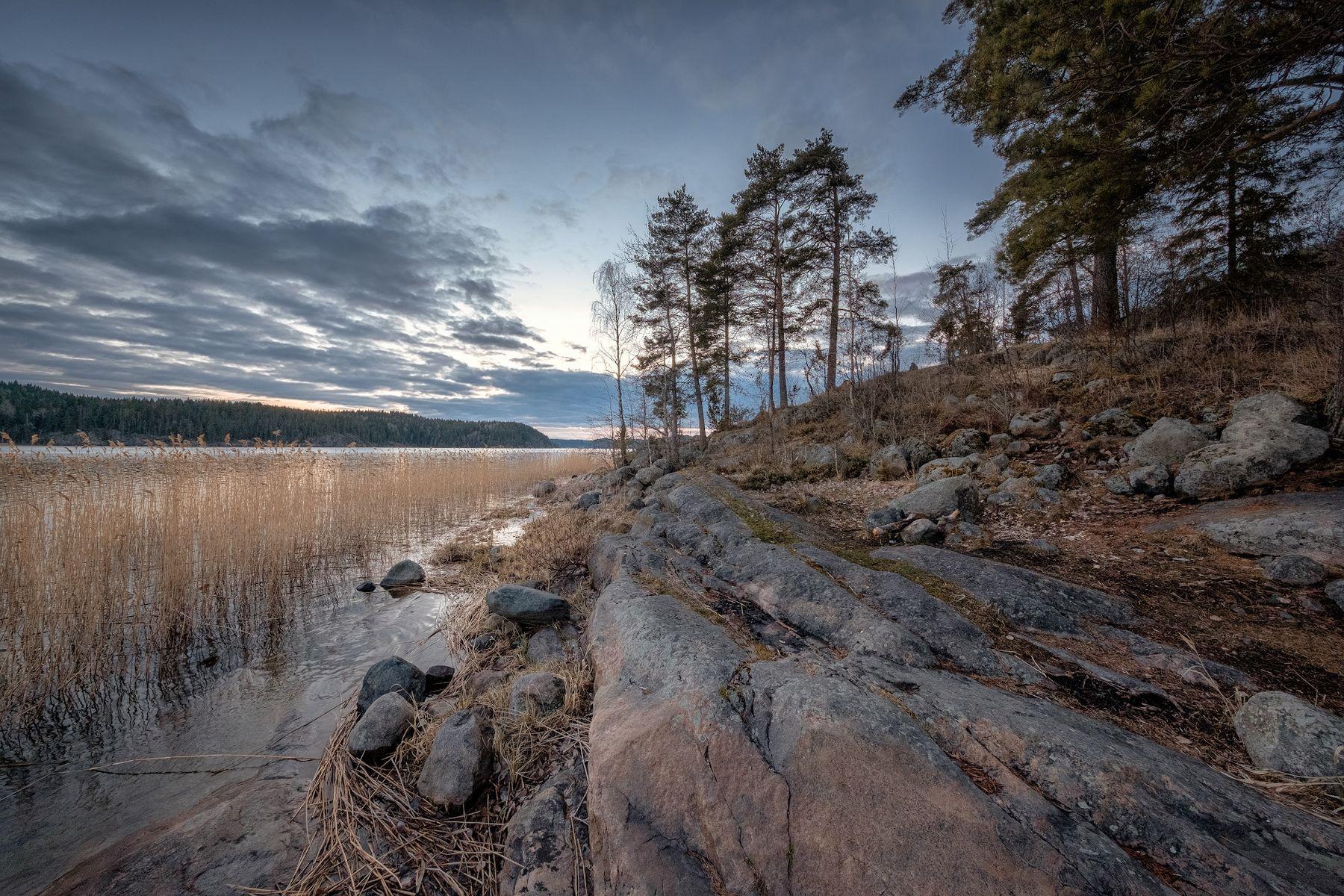 Карельские камни карелия ладога залив закат скалы камни деревья облака холод пейзаж природа