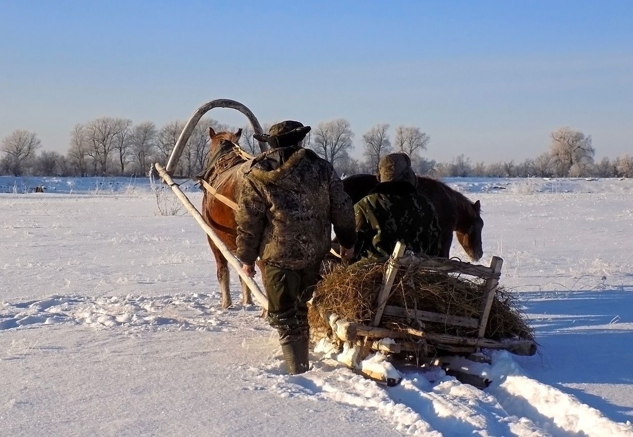 ***Зима!.. Крестьянин, торжествуя, На дровнях обновляет путь; ( А.С. Пушкин ) Сибирь зима сельские мотивы жанр
