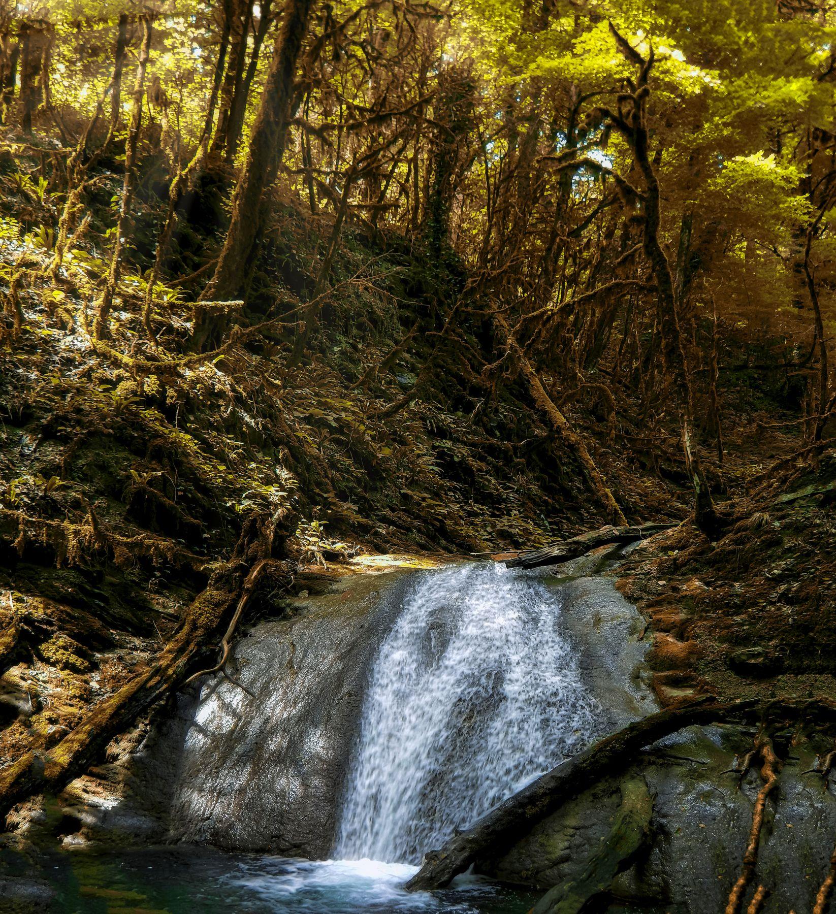 Водопад. осень водопад лес вода природа