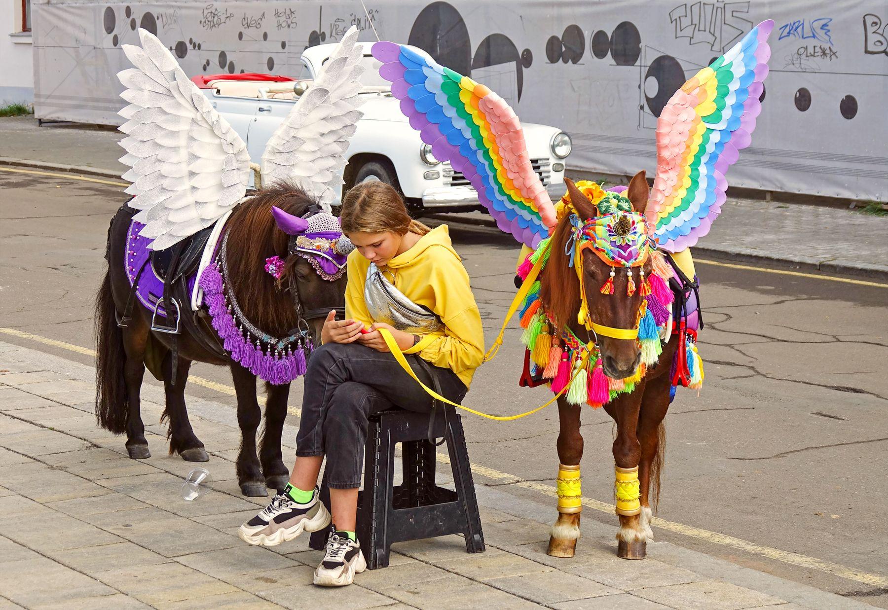 Когда ангелы отдыхают девочка мобильник лошадки